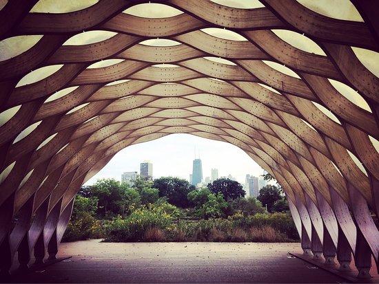Lincoln Park: photo0.jpg