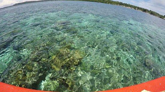 Mamaling Resort Bunaken: IMG-20161006-WA0009_large.jpg