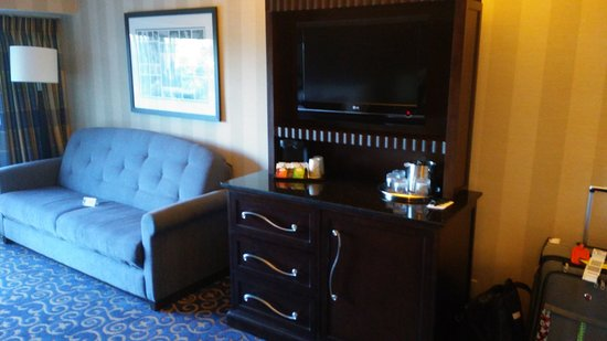 Simple Disneyland Hotel Room has a pull out sofa bed Elegant - Latest pull out sofa beds Lovely