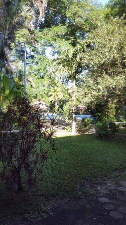 BEST WESTERN El Sitio Hotel & Casino : El jardín desde la habitación y al fondo la piscina.