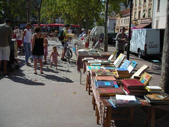 Marche des bouquinistes Monplaisir Lyon 8