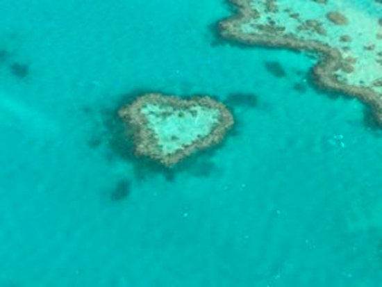 This is Heart Reef, which is a natural reef! Not man made.