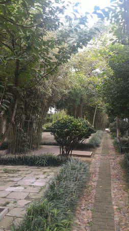 Jiaozhou, China: 曲徑通幽