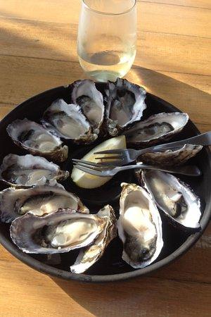 Bruny Island, Australia: yes please yummy