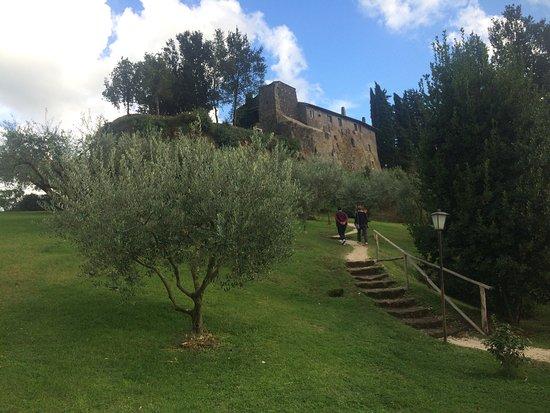 Agriturismo Borgo Di Tragliata f9bb8f13498