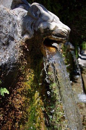Menites, Grecia: γαργαρο νερο ..δροσερο και ποσιμο ...