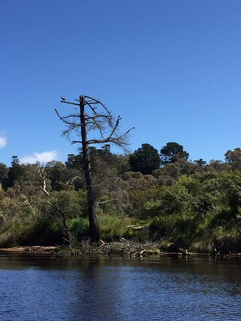 Albany, Australien: The story of Honeymoon Island