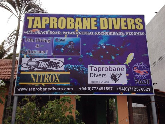 ‪Taprobane Divers‬