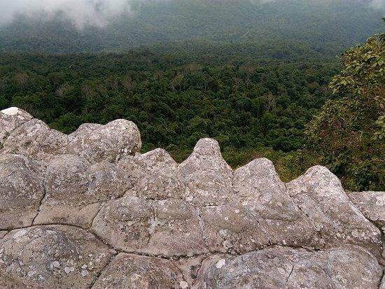 Phu Hin Rong Kla National Park : ลานหินปุ่ม