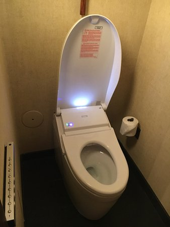 four seasons resort lanai toto bidet toilet - Toto Bidet