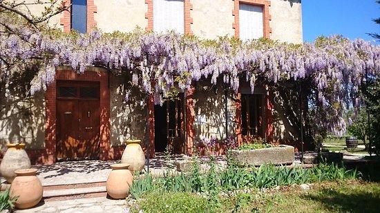 Saint-Victor-la-Coste, Fransa: Caveau de dégustation/vente