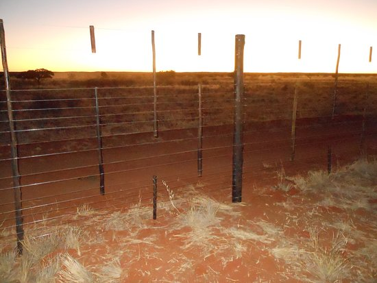 Red Dune Camp: Farmfence with sunset