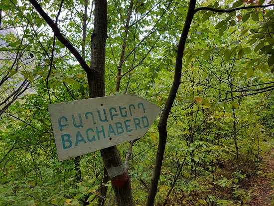 Kapan, Armenien: first sign in the forest