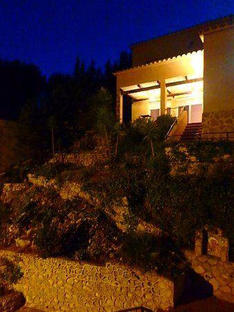 Olivella ภาพถ่าย