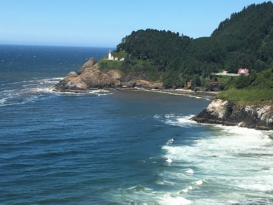 Siuslaw National Forest: closer up