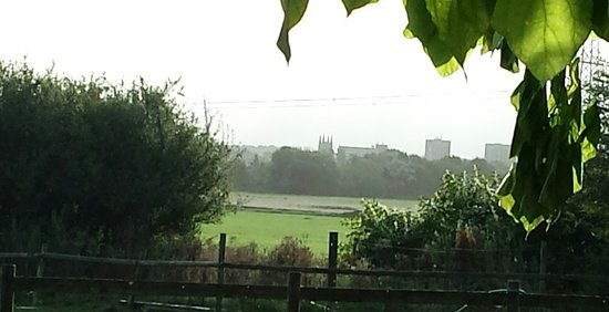 Hopwas, UK: 20160929_082038_large.jpg