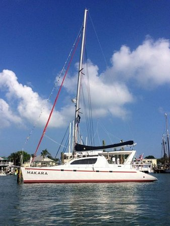 World Sailing Adventures - Day Charters