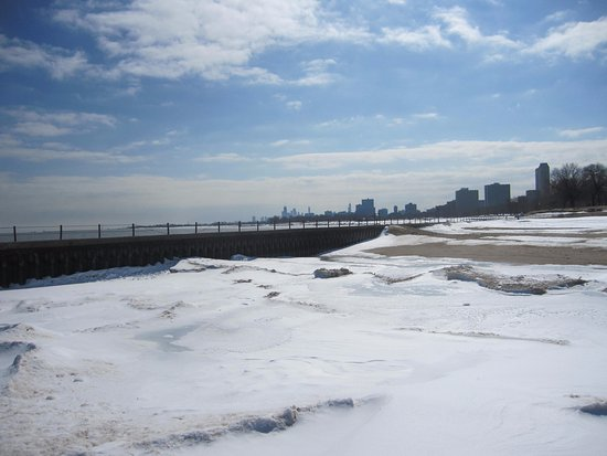 Chicago Skyline From Kathy Osterman Beach In January