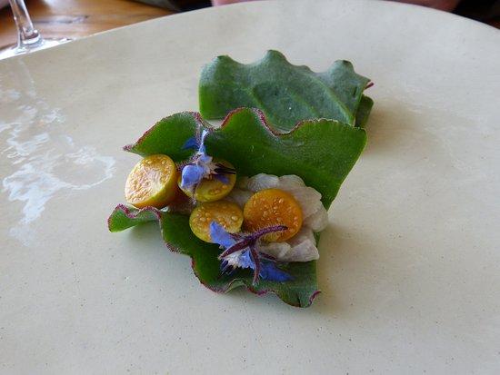 Soutslaai leaf snack...