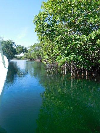 Placencia, Belize: photo8.jpg