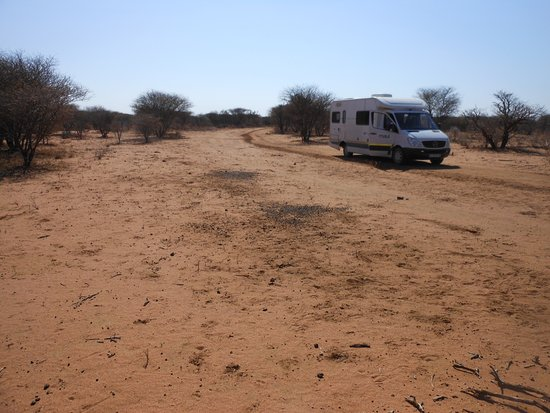Okahandja, Namibia: gamefarm