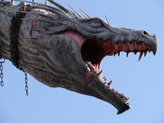 dragon - Picture of The Wizarding World of Harry Potter ...