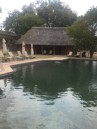 Mala Mala Private Game Reserve, Sudáfrica: MalaMala Main Camp Pool and Fitness Center