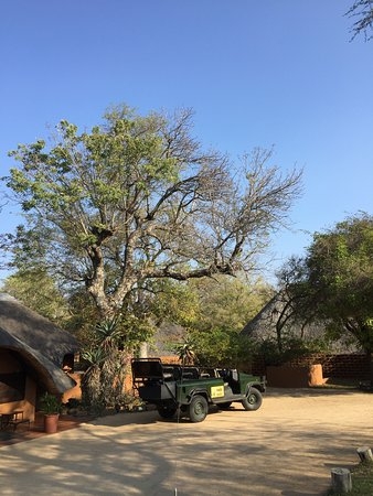 Mala Mala Private Game Reserve Photo