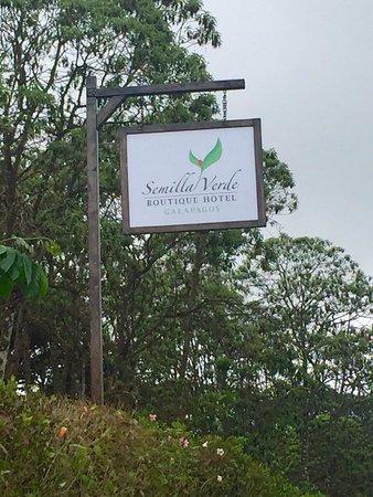 Semilla Verde Boutique Hotel Photo