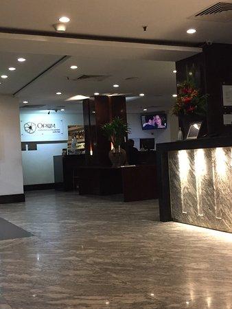 골든 튤립 이파네마 플라자 호텔 이미지