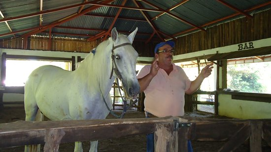 Nuevo Arenal, Costa Rica: Owner and dancing horse