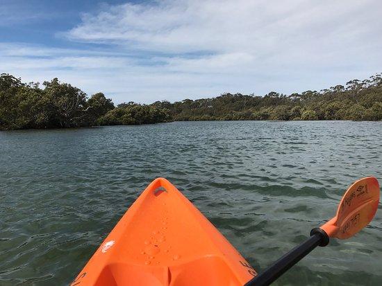 Huskisson, Austrália: photo1.jpg