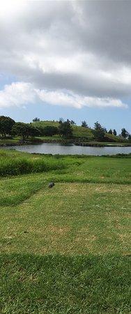 Big Island Country Club: photo6.jpg