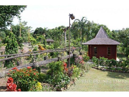 Hadfa Garden