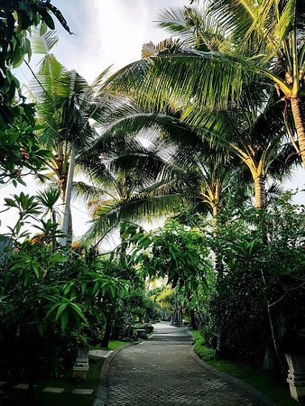 بومي لينجاه ذا براتاما فيلاز: Bumi Linggah grounds