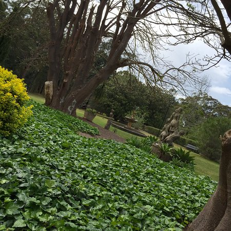 Faulconbridge, Australia: photo3.jpg