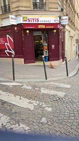 Atelier Alupi: Montmartre - la star du Sitis Market un chat roux