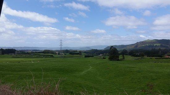 Mamaku, Νέα Ζηλανδία: 20161008_133716_large.jpg