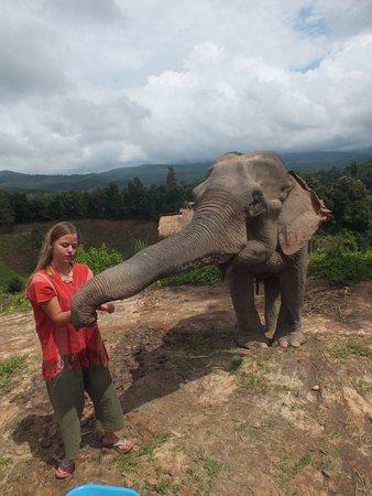 ช้าง แซงชัวรี
