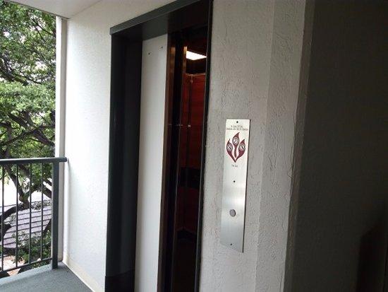 Kuhio Banyan Club: エレベーターは普通