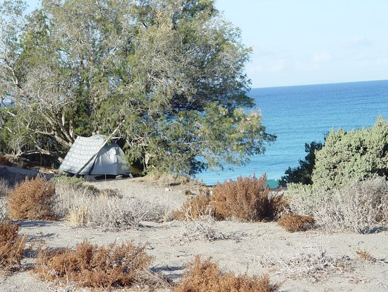 Pitsidia, Greece: Near Komos beach there is enough place for tent