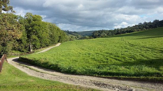 Bleddfa, UK: Stunning view of the drive up to the house