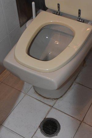 Aloha Hotel: Broken toilet