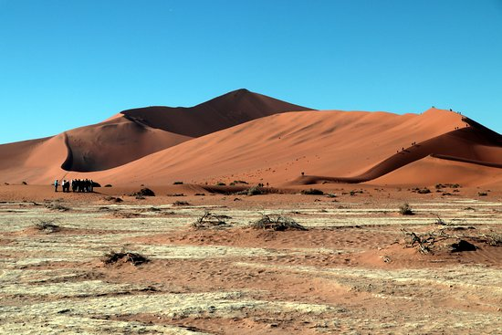 Big Daddy Dune at Sossusvlei
