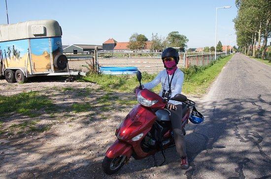 Landsmeer, The Netherlands: 女騎士