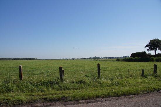 Landsmeer, The Netherlands: 綠色鄉野風光