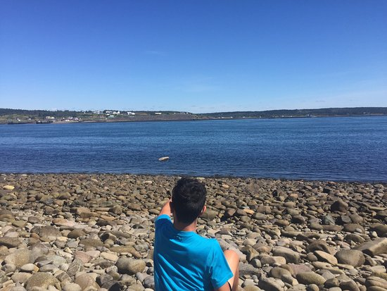 Brier Island, Canada: Amazing not to miss on Nova!