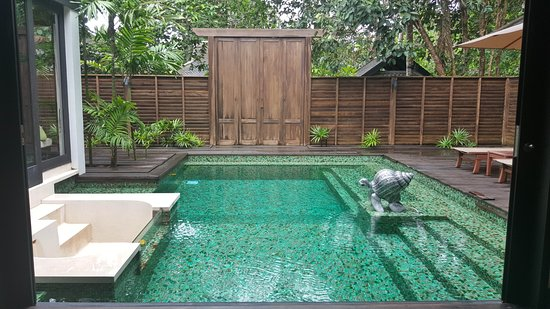 Anantara Mai Khao Phuket Villas: View from the bedroom, you can literally run from the bed and jump in the pool!