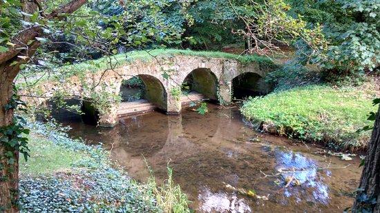 Packhorse bridge, Walsingham Abbey