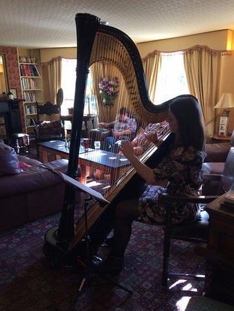 Maentwrog, UK: The harpist